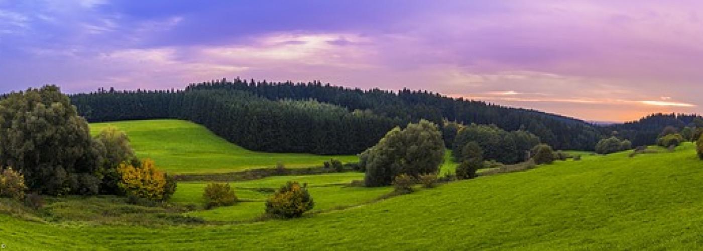 Panorama im Grünen